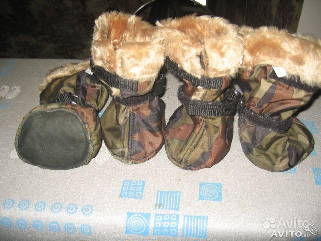 Рулетки, шлейки, сумки и одежда для собак в Москве. Объявление Обувь для