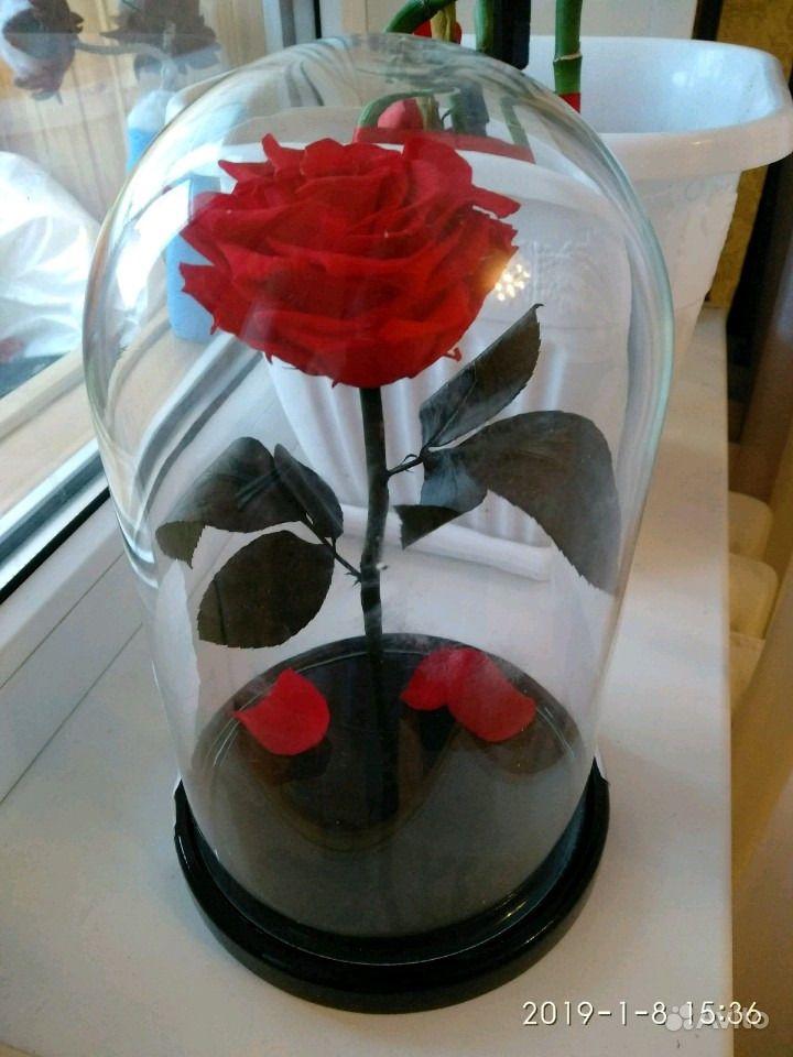 Роза в стеклянной колбе с коробкой купить на Зозу.ру - фотография № 1