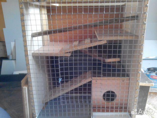 Шиншилла - Корма для собак и кошек - купить клетки
