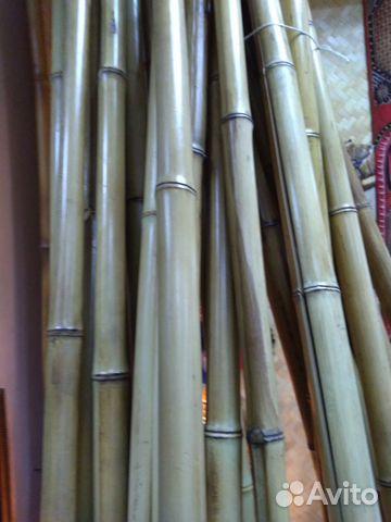 Бамбуковые палки и половинки купить в Самарской области на Avito ... e59fecbad25