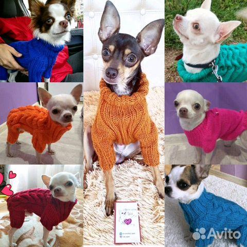 вязаная одежда для собак купить продать или отдать в смоленской