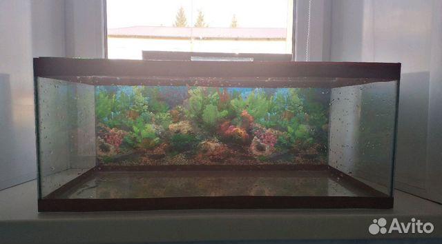 Aquarium 89103112387 buy 6
