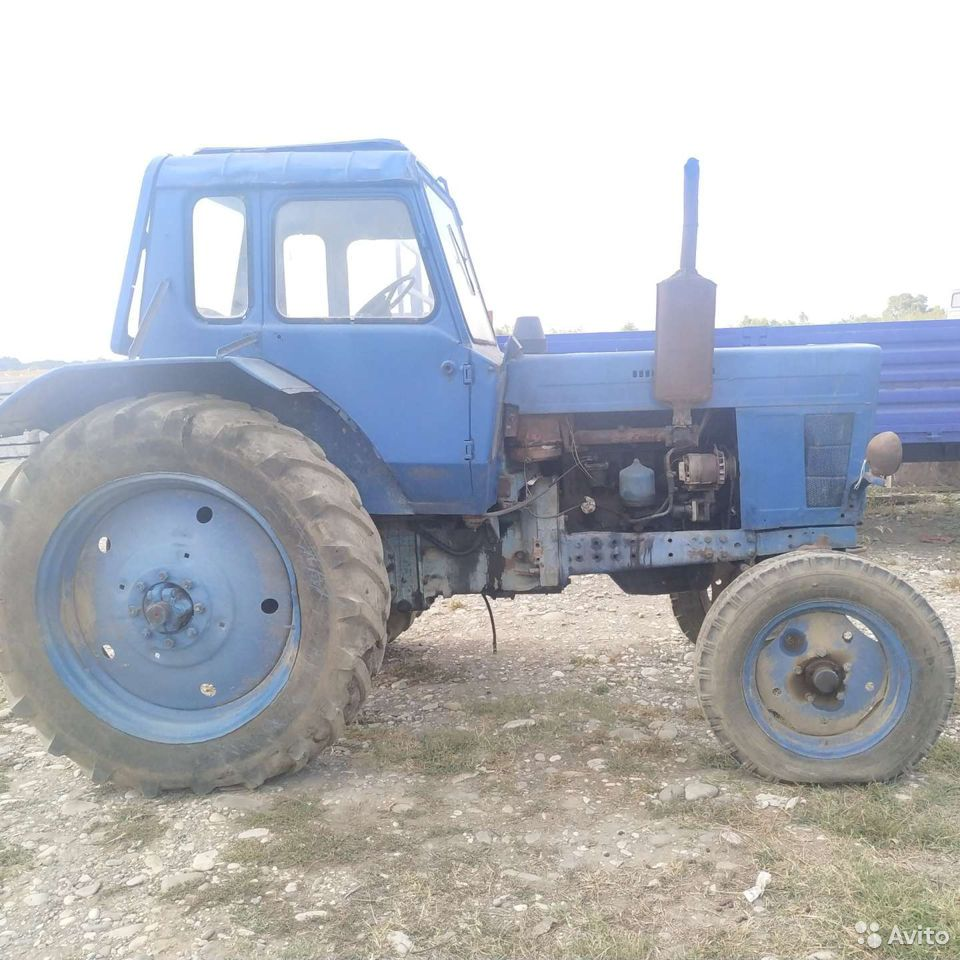 Tractor MTZ 80  89659543903 buy 9