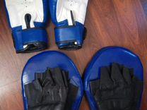 Лапа и боксерские перчатки